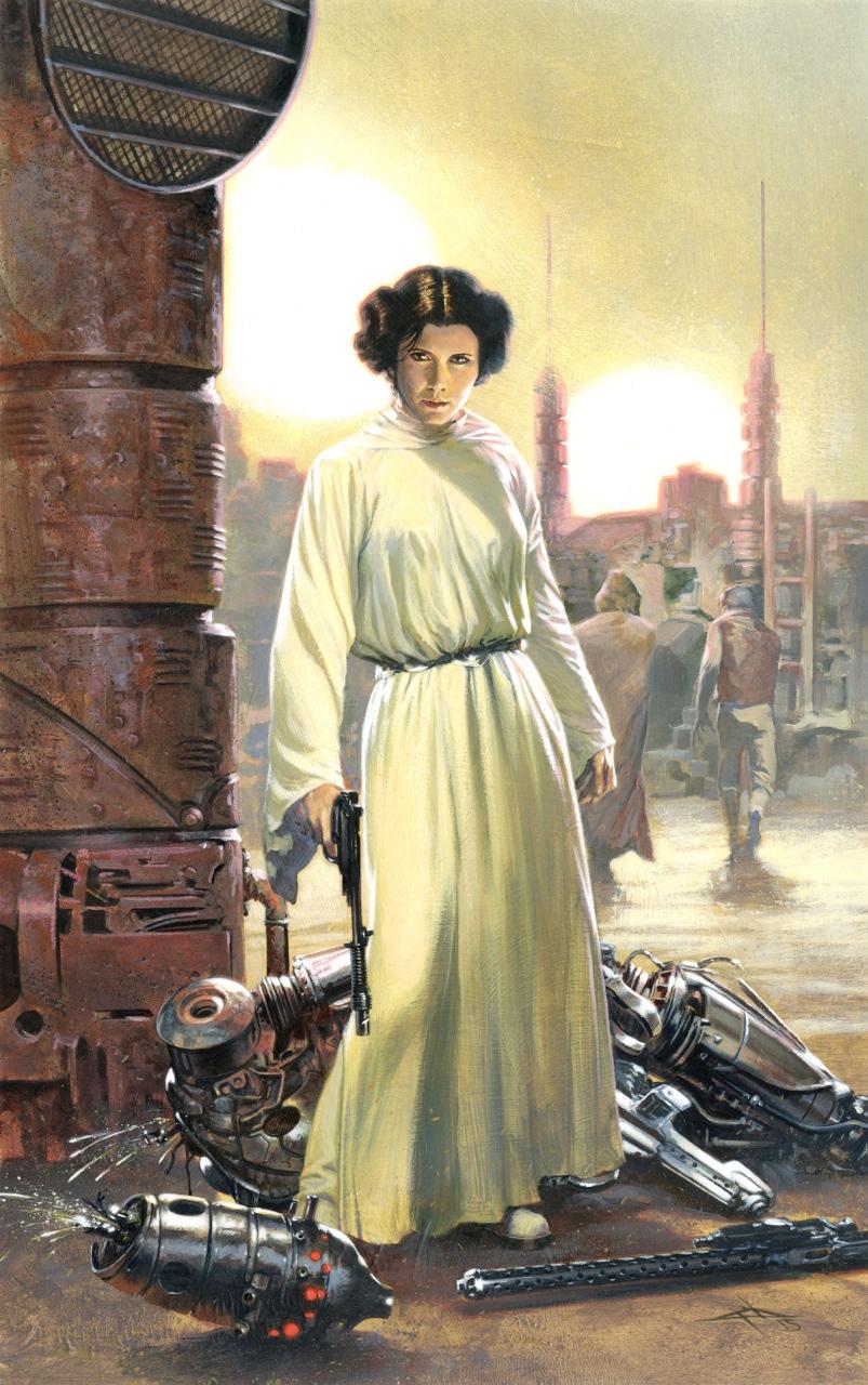 Roqoo Depot Galleria Spotlight: Gabriele Dell'Otto | Roqoo ... Old Star Wars Princess Leia