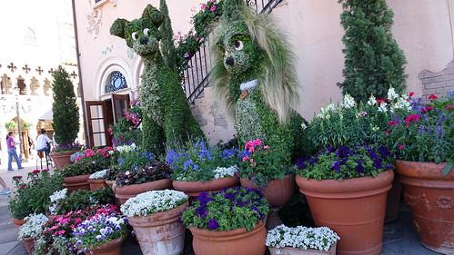 Epcot Flower and Garden Festival 2016 (309)