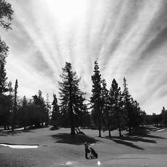 La Rinconada Country Club - Monte Sereno, February 25, 2015