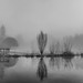 Across The Lake - Syon Gardens Winter Mist by Simon & His Camera