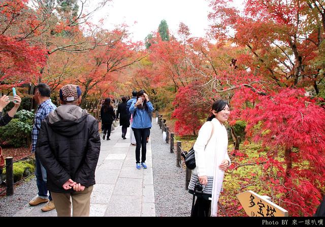 京都-永觀堂033