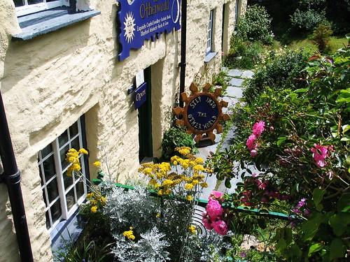 Cornwall Summer 2015 (28)