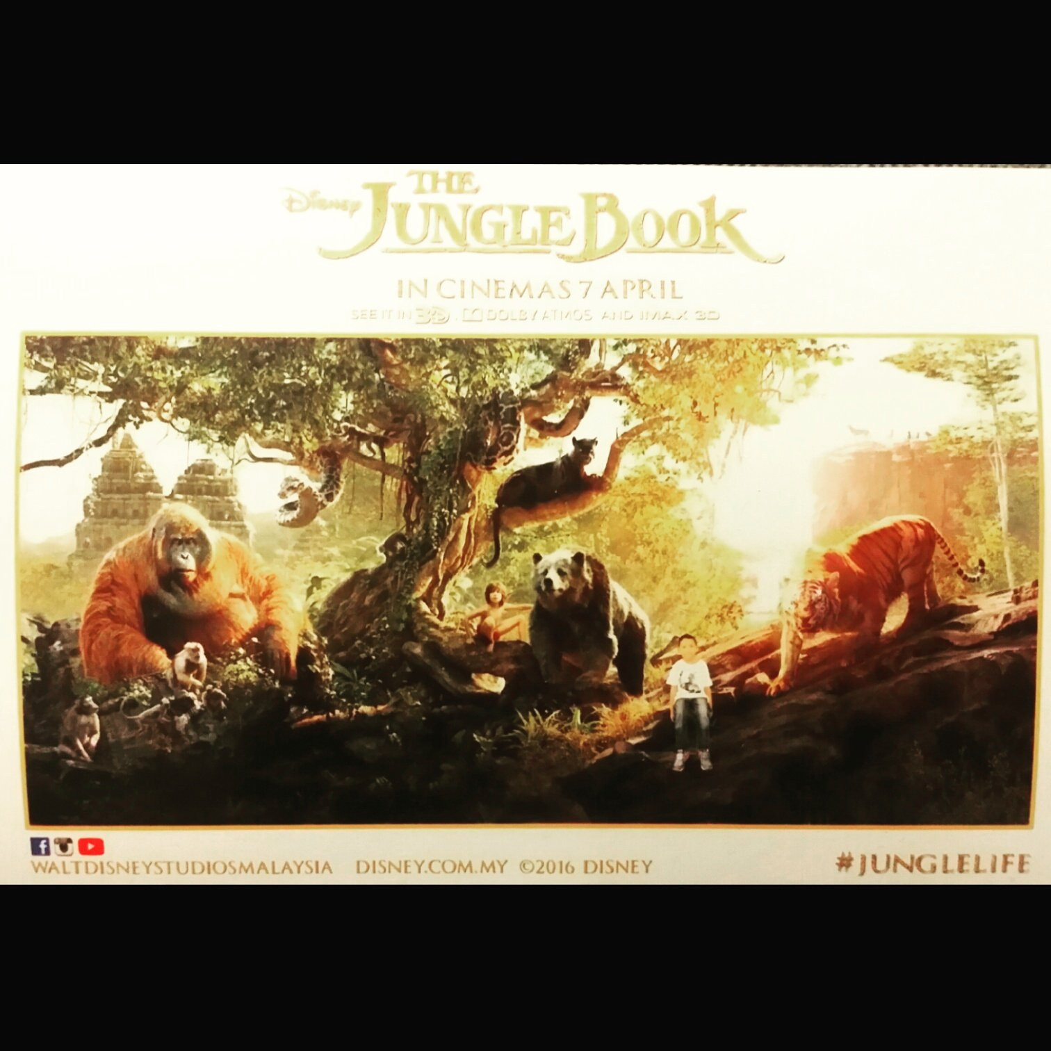 #junglebookmovie was quite good. I pity those who left their imagination at home while they watch this excellent on-screen intepretation of #rudyardkipling 's work. #geekgoestothecinemas #moviebuff