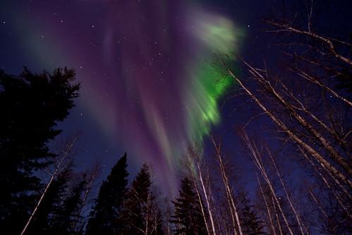 012016 - Aurora overhead on a moonlit night