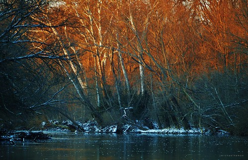 sunset tree river landscape nikon scenery 300mm sycamore flatrock waterscape hamon d3200