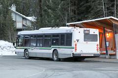 9288 (rear)