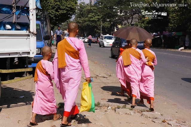 Myanmar, Little Monks