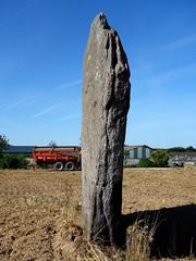 Le menhir de La Verrie près de Monteneuf - Morbihan - Août 2015 - 06