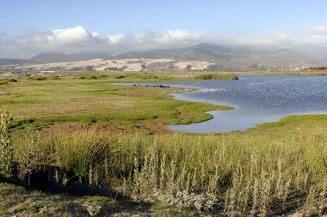 Laguna Conchalí