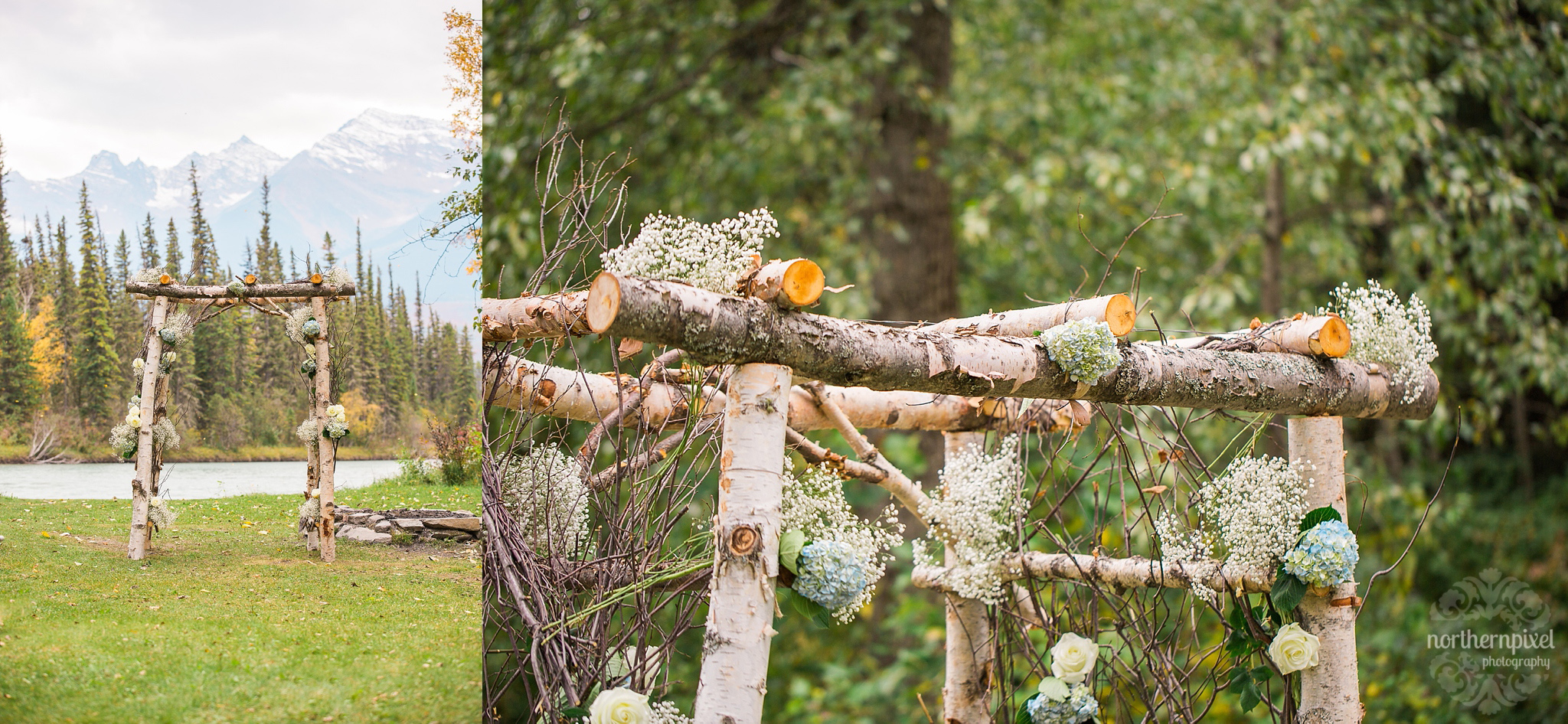 Birch Wedding Arbour