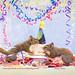 Squirrel Appreciation Day Party!!! by Nancy Rose
