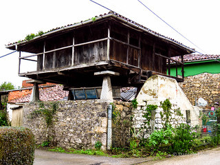 Camino Primitivo - 1 Oviedo-Grado (59)