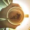 Day -1: Tea