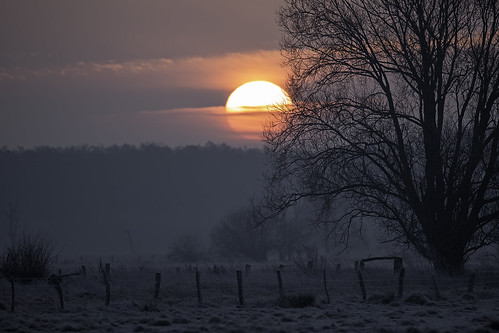 winter sunrise sonnenaufgang steinhudermeer winzlar meerbruch meerbruchswiesen