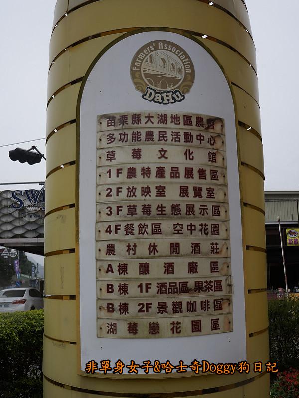 苗栗草莓大湖酒莊清安洗水坑豆腐街08