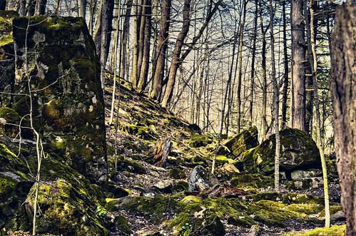 trees ontario canada nature nikon rocks samsung niagara jordan master lincoln layer vineland ribbet ballsfalls photomatix nikkor50mm18 tonemapping d5100 samsungmaster paulboudreauphotography nikond5100 photoshopcc