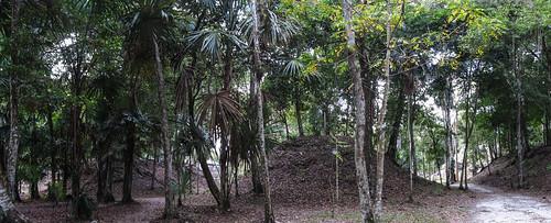 Tikal: les trois Jeux de Pelotes (devant la Place des Sept Temples)