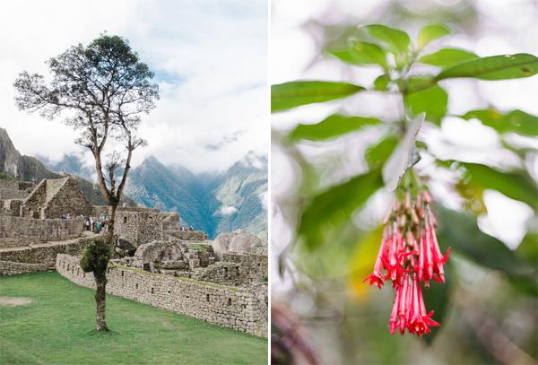 RYALE_Peru-037a