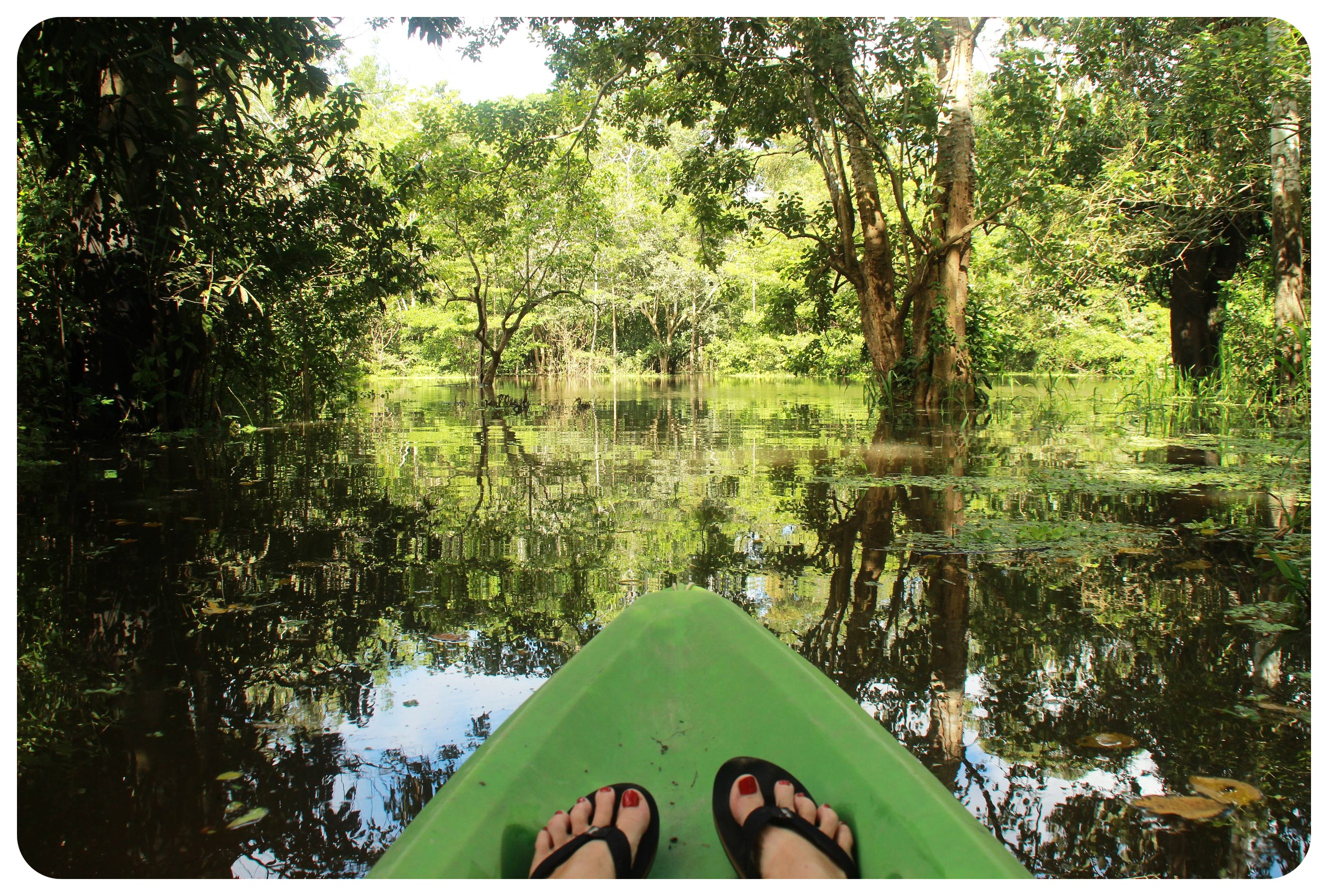 kayak trip amazon