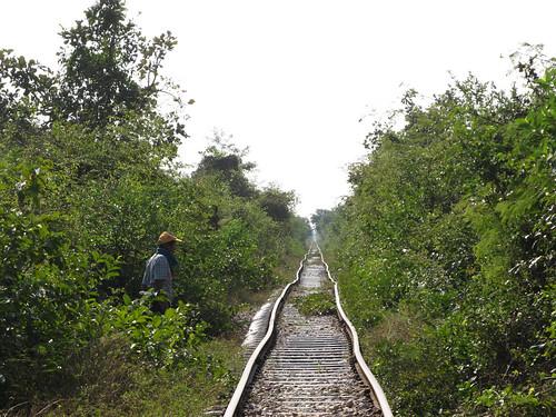 La campagne de Battambang: le bamboo train, aucune illusion d'optique...