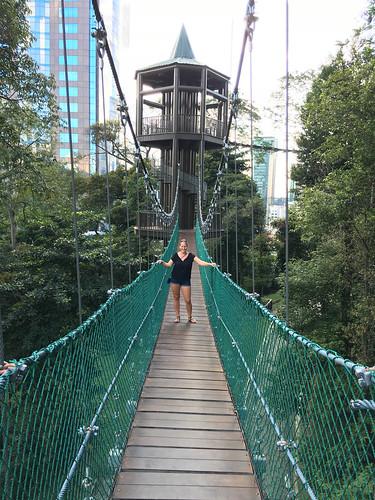 Eine Hängebrücke an der nächsten