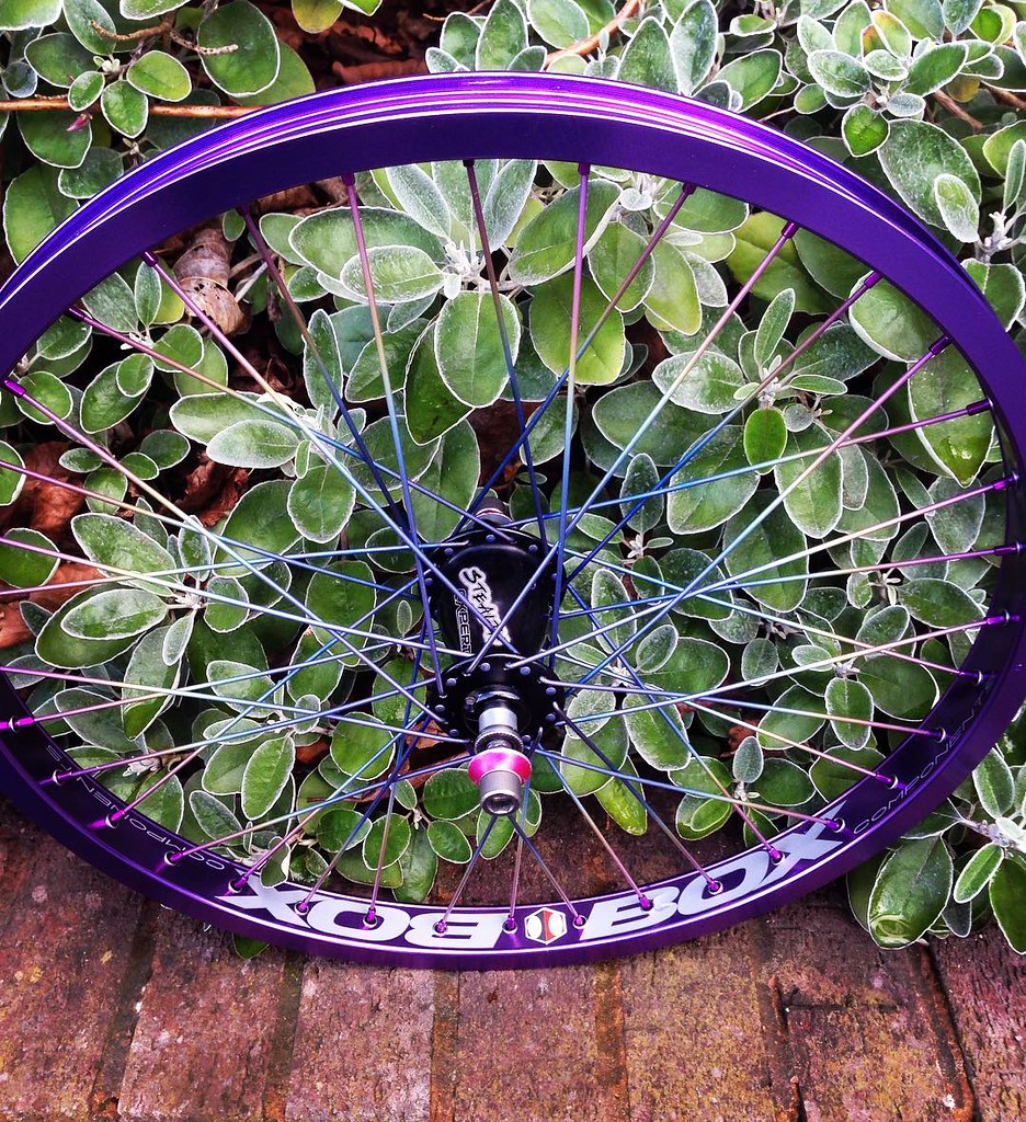 Rear Wheel 3x as usual Titanium rainbow spokes with purple… | Flickr