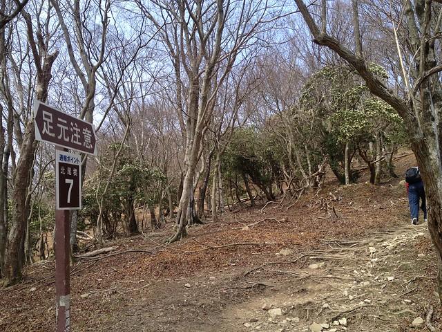 入道ヶ岳 北尾根 通報ポイント7