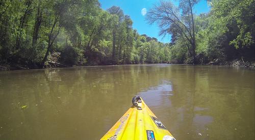 Turkey and Stevens Creeks-216