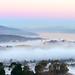 Fog by davidyuweb