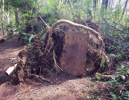Tree fort! 🌲