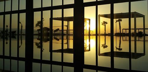 camera trees light sunset orange sun reflection beach window water pool silhouette yellow gold warm mediterranean phone relaxing cyprus samsung indoor palm shade backlit guzelyurt gaziveren