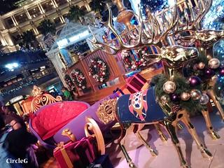 1881 hongkong tst 尖沙咀 2015 CIRCLEG 聖誕裝飾 (4)