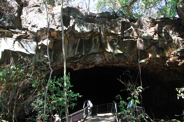 澳洲昆士蘭Undara 火山NP-熔岩洞-20141116-賴鵬智攝-16