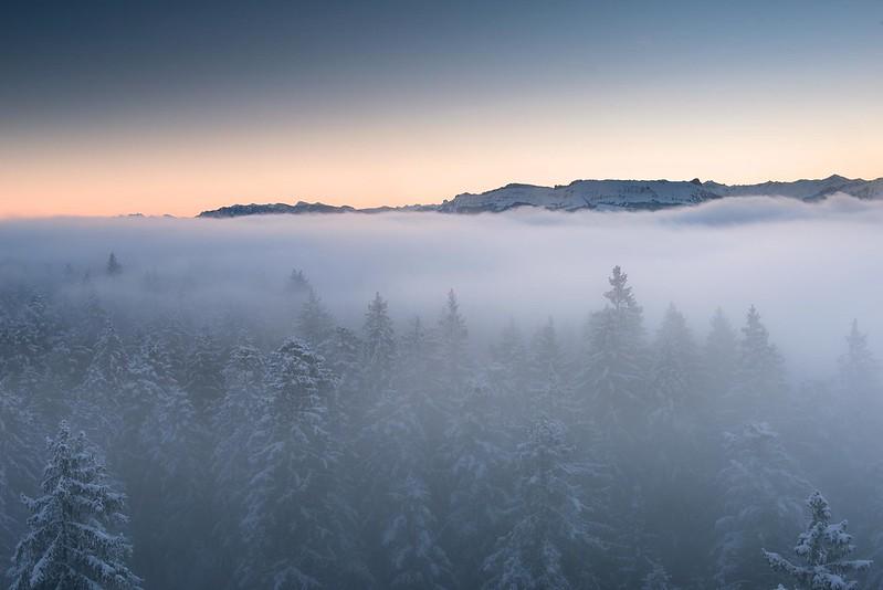 At the edge of the mist - Chuderhüsi