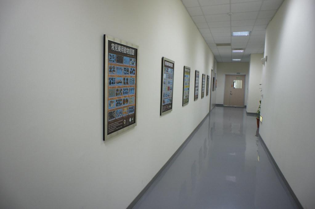 台南市新市區港香蘭觀光工廠 (29)