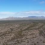Big Desert Sky