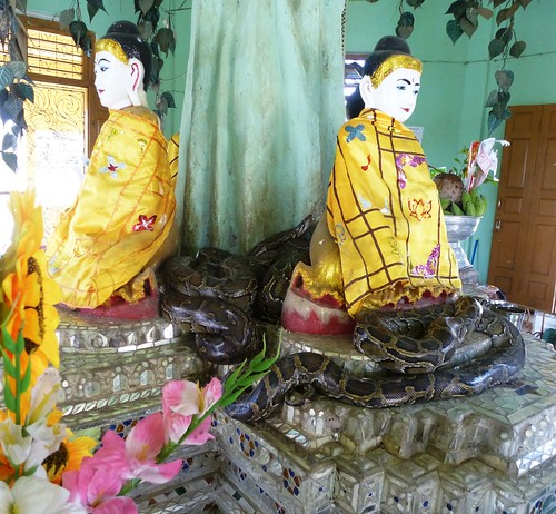 Birmanie-Yangon-Twante-Pagode des serpents (7)