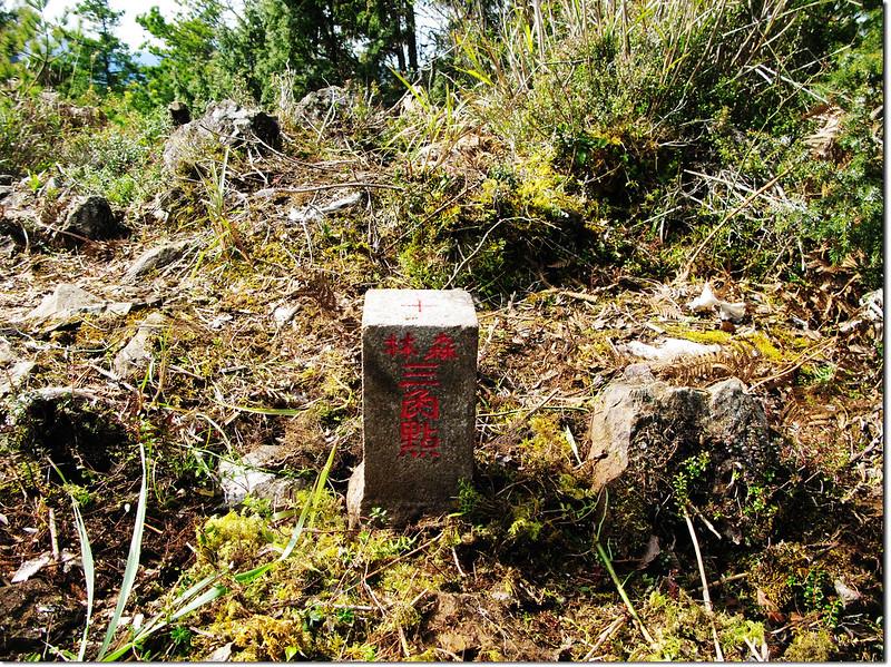 斯拉巴庫山山字森林三角點(Elev. 2757 m) 1