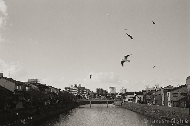 view from Asanogawaohashi