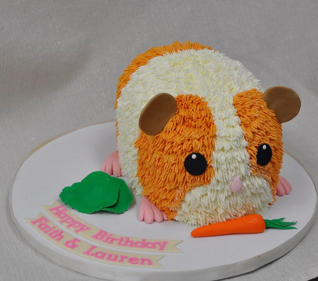 Hamster Birthday Cake A Photo On Flickriver - Hamster birthday cake