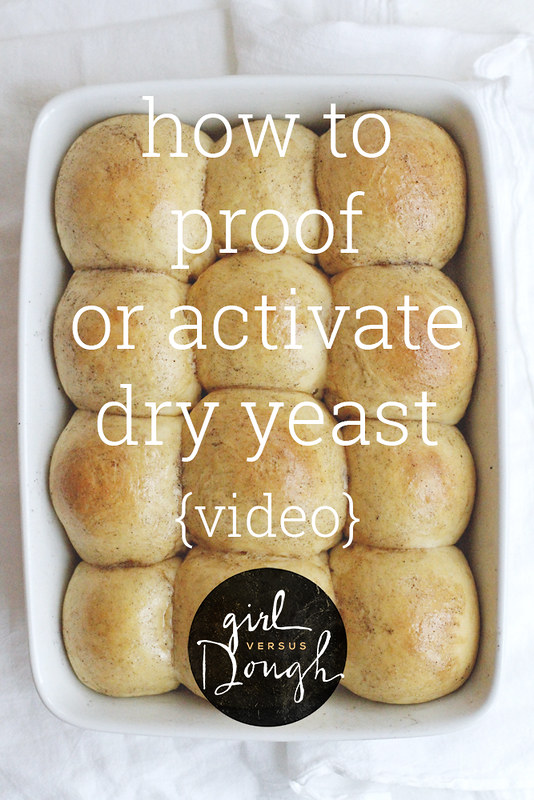 How to Proof or Activate Dry Yeast {VIDEO} | girlversusdough.com @girlversusdough