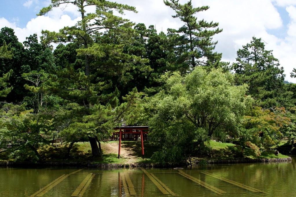 Nara Park_10