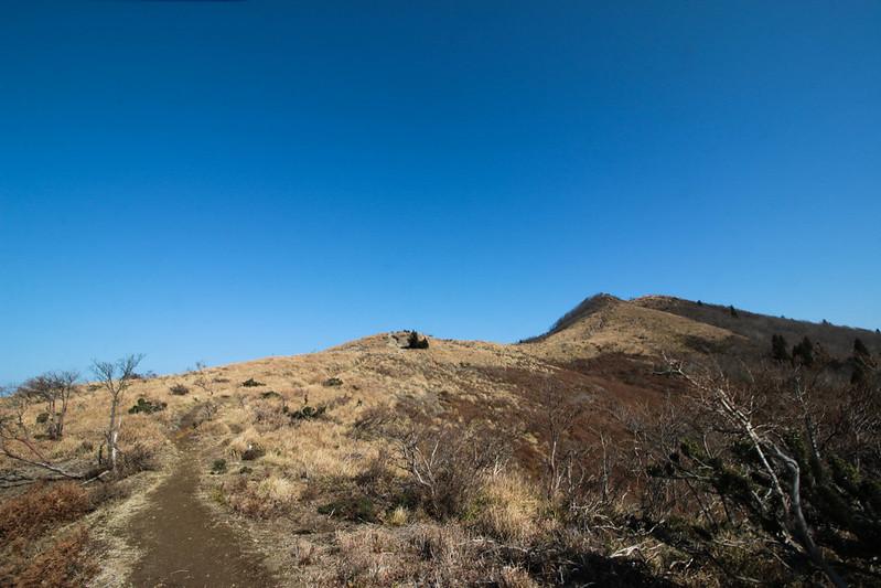 20141122-武奈ヶ岳&京都ライトアップ-0180.jpg