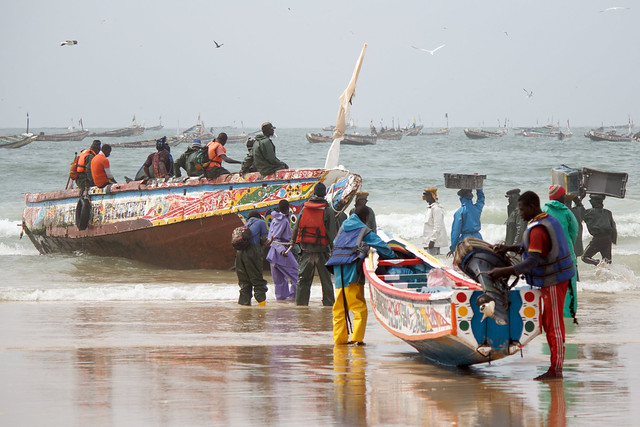 fishermen unloading a boat in Senegal