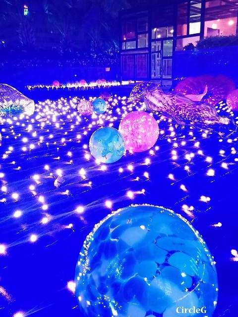 NEW TOWN PLAZA SHA TIN HONGKONG 沙田 新城市廣場 2015 CIRCLEG 聖誕裝飾 (21)