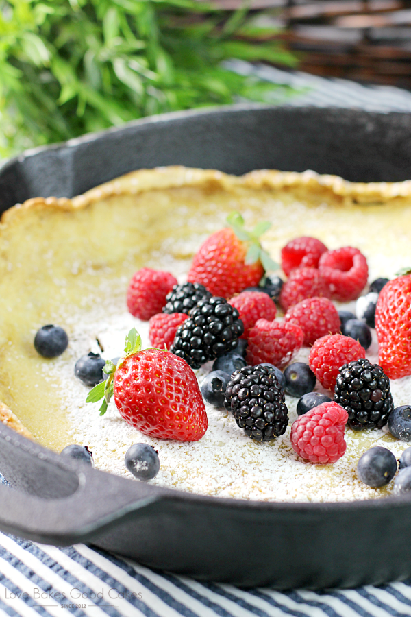 This Dutch Baby Pancake with Fresh Berries makes an easy and delicious breakfast! It's almost magical watching it bake up into puffy golden-brown pancake perfection! #12bloggers