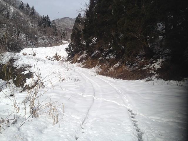 土蔵岳 上原谷 林道合流