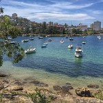 One of the looks along the Manly to Spit Bridge Scenic Walkway in Sydney. A 10km track that takes roughly 3 hours, it's a little bit of the bush just outside the city center. A great day trip for us included the Manly Ferry and a walk from the bay to Manl