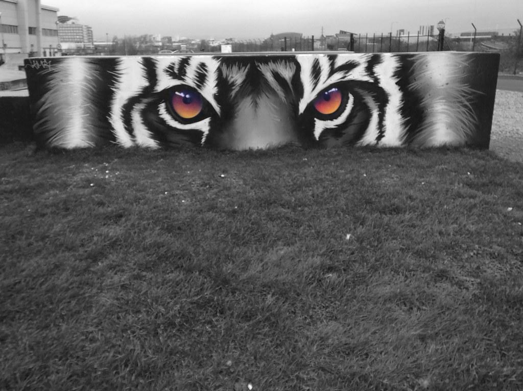 Peaceful Progress art in Cardiff Bay skatepark