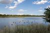 Wascana Lake Migratory Bird Santuary